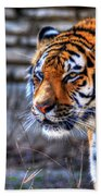 0010 Siberian Tiger Beach Towel