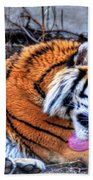 0014 Siberian Tiger Beach Towel