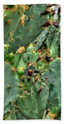 002 For The Cactus Lover In You Buffalo Botanical Gardens Series Beach Towel