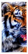 002 Siberian Tiger Beach Towel