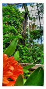 003 Falling Waters Buffalo Botanical Gardens Series Beach Towel