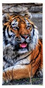 003 Siberian Tiger Beach Towel