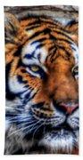004 Siberian Tiger Beach Towel
