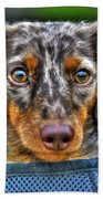 0054 Puppy Dog Eyes Beach Towel