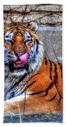 006 Siberian Tiger Beach Towel