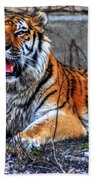 008 Siberian Tiger Beach Towel