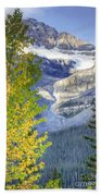 0141 Fall Colors On Icefield Parkway Beach Towel