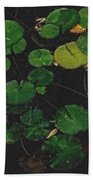 0148-lily -   Pastel Chalk 2 Sl Beach Towel