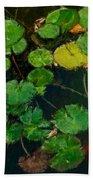 0148-lily -  Expressionist Plein Air Sl Beach Sheet