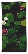 0151-lily -  Pastel Chalk 2 Sl Beach Towel