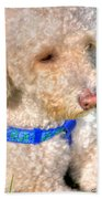 02 Portriat Of Wizard   Pet Series Beach Towel