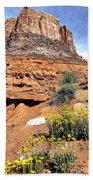 0712 Guardian Of Canyonland Beach Towel