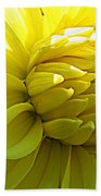 Golden Dahlia Beach Towel