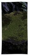 A Moss Covered Stone Inside The National Orchid Garden In Singapore Beach Towel