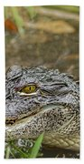 Alligator Beach Towel