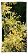 Allium Flavum Or Fireworks Allium Beach Towel