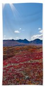 Alpine Landscape In Fall Beach Towel