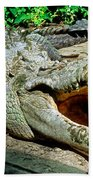 American Crocodile Beach Towel