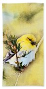 American Goldfinch - Digital Paint Beach Towel