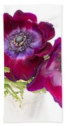 Anemone Trio Beach Towel