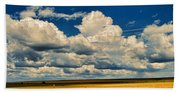 Approaching Storm Beach Towel