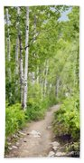 Aspen Path Impasto Beach Towel