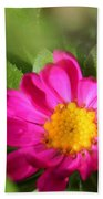 Aster From The Daylight Mix Beach Towel