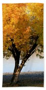 Autumn At The River Beach Towel