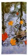 Autumn Beach Towel by Daniel Janda