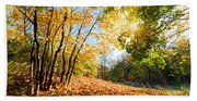 Autumn Fall Landscape In Forest Beach Towel