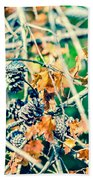 Autumn Leaves And Pinecone Background Beach Towel