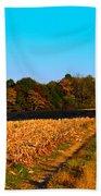 Autumn Road Beach Sheet