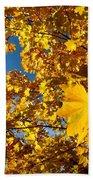 Autumn Splendor 9 Beach Towel