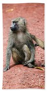 Baboons In African Bush Beach Towel