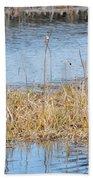 Bald Eagle Pair Beach Towel