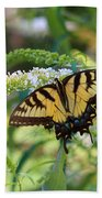 Beautiful Butterfly Pollination Beach Towel