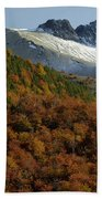 Beech Forest, Chile Beach Towel