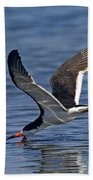 Black Skimmer Beach Towel