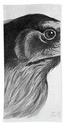 Blackburn Birds, 1895 Beach Towel