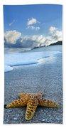 Blue Foam Starfish Beach Sheet