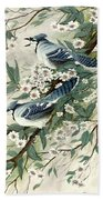Blue Jays And Blossoms Beach Towel