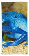 Blue Poison Dart Frog Beach Towel