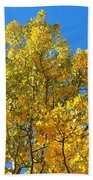 Blue Skies And Golden Aspen Trees Beach Towel