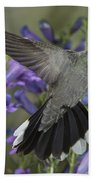 Blue-throated Hummingbird Beach Towel