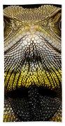 Bocourts Dwarf Iguana Choco Rainforest Beach Towel