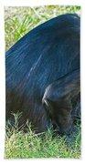 Bonobo Mother And Baby Beach Towel