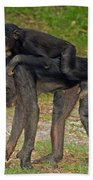 Bonobos Beach Towel