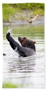 Brown Bear Playing With A Bone Beach Towel