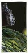 Butterfly Collection Beach Towel