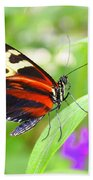Butterfly On Bush Beach Towel